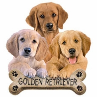 Golden Retreiver Puppies Shirts