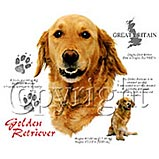 Golden Retriever Breed Info Shirt