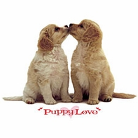 Puppy Love Shirts
