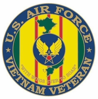 US Air Force Vietnam Veteran Pin
