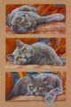 Cross Stitch Kit Max the Cat From Dimensions