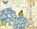 Cross Stitch Kit Paris Hydrangea From Dimensions
