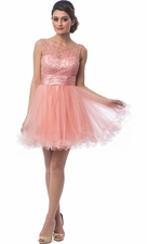 Embroidered Tulle Short Prom Dress