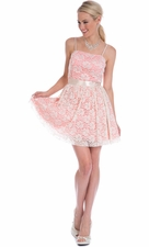 Pastel Lace Mini Prom Dress