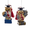 Item # 101134 - Teacher Owl Christmas Ornament