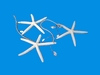 Item # 115022 - 7 Foot Raffia Starfish/Shell Garland