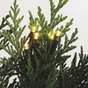 Item # 260733 - Set of 24 Christmas Tree Lights With Warm White Bulbs