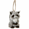 Item # 260853 - Plastic Poly Raccoon Christmas Ornament