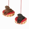 Item # 262231 - Lab Puppy On Bed Christmas Ornament