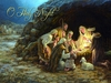 Item # 552038 - O Holy Night/Nativity Christmas Cards