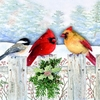 Item # 552087 - Fence Friends Christmas Cards
