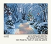 Item # 552154 - Luminary Path Christmas Cards
