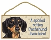 Item # 628072 - Black/Tan Dachshund Spoiled Sign