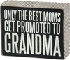 Item # 642280 - Promoted To Grandmas Box Sign