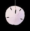 Item # 115008 - White Sand Dollar Christmas Ornament