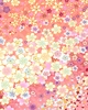 FLOATING CHERRY BLOSSOMS: Rose Pink/Gold (1/2 Yd)