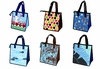 HOT COLD INSULATED LUNCH BAGS: 6 SELECTIONS