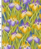 LOTUS IN SPRINGTIME: Irises: Blue/Gold (1/2 Yd.)