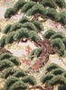 Pine Trees (Bonsai): Cream/Gold Metallic (1/2 yd)
