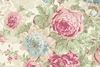 ROSE COLLECTION: Champagne (1/2 Yd.)