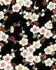 SERENE COLLECTION: Cherry Blossoms - Black (1/2 Yd.)