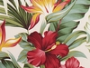 Tropical Floral Paradise: Natural (1/2 yd)