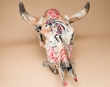 "Antiqued Hand Painted Steer Skull 20.5"" -Kokopelli  (ps88)"