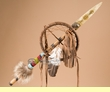 "Native Medicine Shield & Spear Talking Stick 24"" -Apache  (15a)"