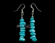 Native American Indian Jewelry -Tigua Earrings (99)