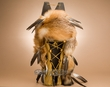 "Native American Red Fox Cradleboard 24"" -Gold  (p1)"