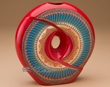 "Navajo Indian Pillow Vase 6.75"" -Circle of Life  (p319)"