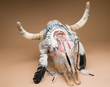 Painted Western Steer Skull 19x19 -Indian Chief  (PS18)