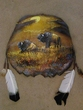 Painted Turtle Shell Wall Art -Buffalo (11)