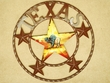 "Rustic Metal Texas Star 16"" - Buffalo  (31) CLEARANCE"