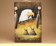 Rustic Hand Painted Wall Plaque 13x20 -Eagle  (P53)
