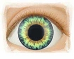 Aqua Hazel � Real Eyes Brand Doll Eyes