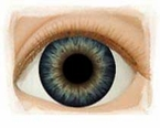 Dark Blue Dusk � Real Eyes Brand Doll Eyes