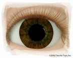 Dark Brown � Real Eyes Brand Doll Eyes