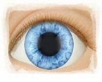 Old Fashioned Blue 18mm - Limited Edition � Real Eyes Brand Doll Eyes