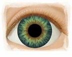 Sunrise Blue � Real Eyes Brand Doll Eyes