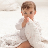 Aden + Anais Dream Blankets