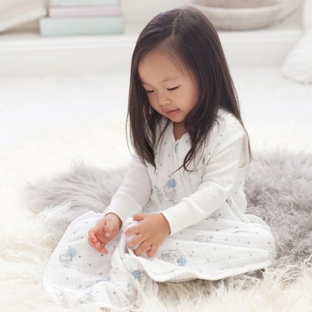 aden + anais Night Sky Classic Sleeping Bag in Owl
