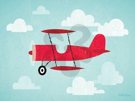 Airborne Biplane Canvas Wall Art