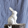 Alert Cotton Tail Bunny Bank