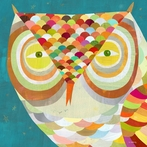 All Seeing Owl Canvas Wall Art