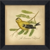 American Goldfinch Bird Framed Wall Art