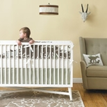 Animal Boys Crib Bedding