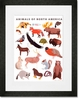 Animals of North America Framed Art Print