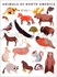 Animals of North America Poster Wall Decal