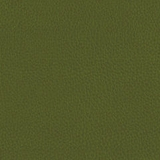 Aura Grass Faux Leather (100% Polyester)